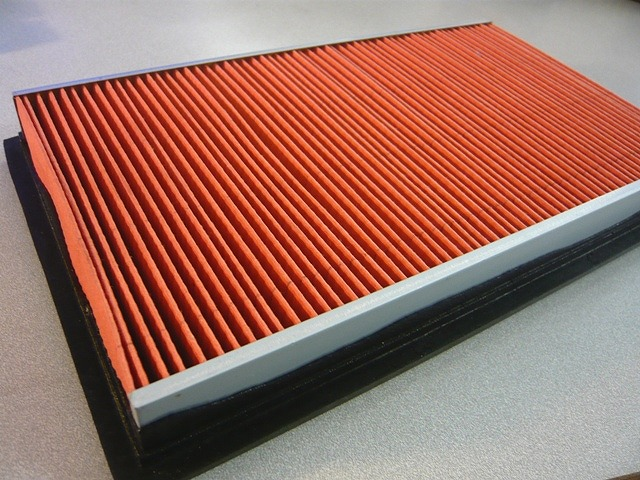 Nissan Skyline - Air Filter (R32, R33)
